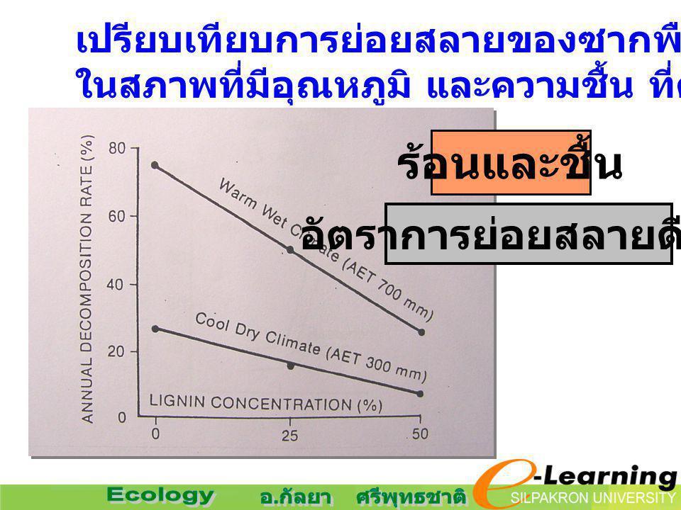 เปรียบเทียบการย่อยสลายของซากพืชในป่า ในสภาพที่มีอุณหภูมิ และความชื้น ที่ต่างกัน ร้อนและชื้น อัตราการย่อยสลายดีกว่า