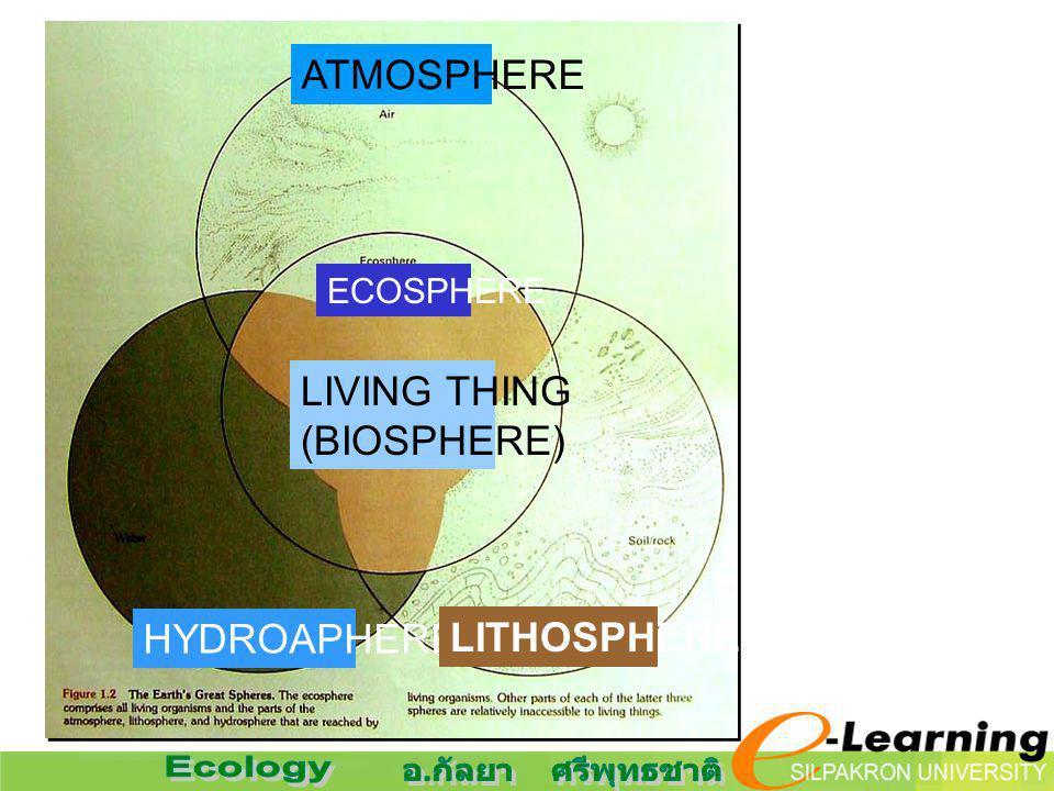 LIVING THING (BIOSPHERE) ECOSPHERE ATMOSPHERE HYDROAPHERE LITHOSPHERE