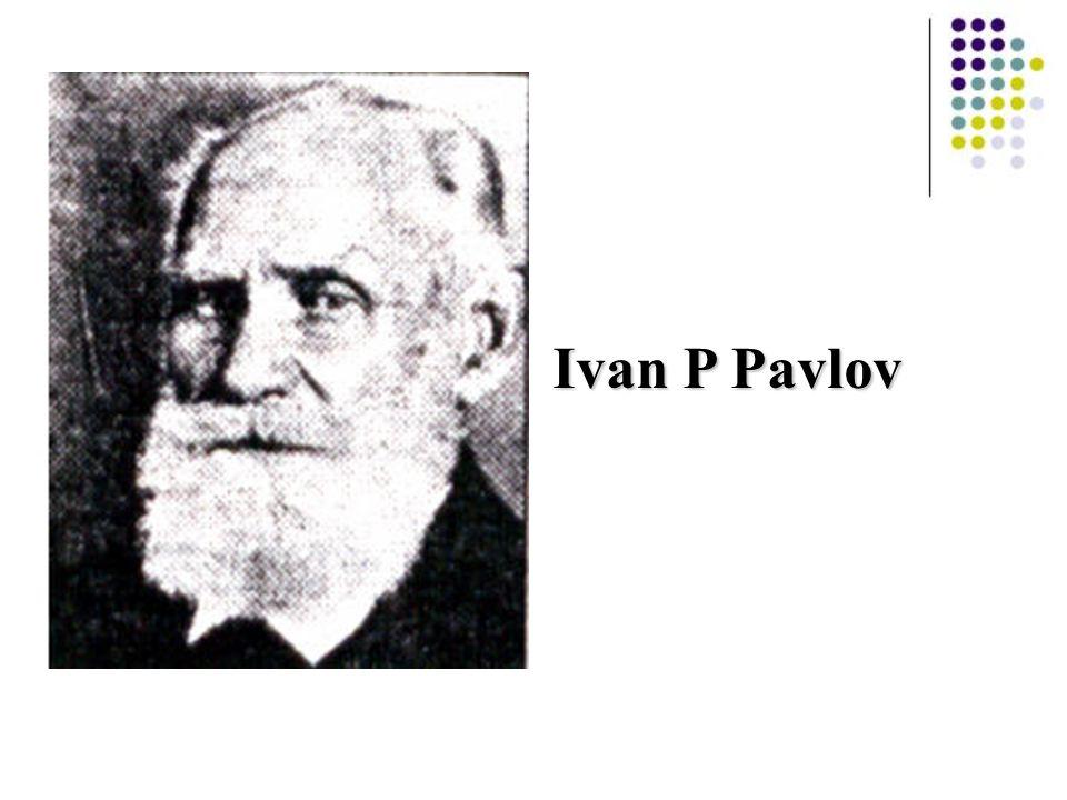 Ivan P Pavlov