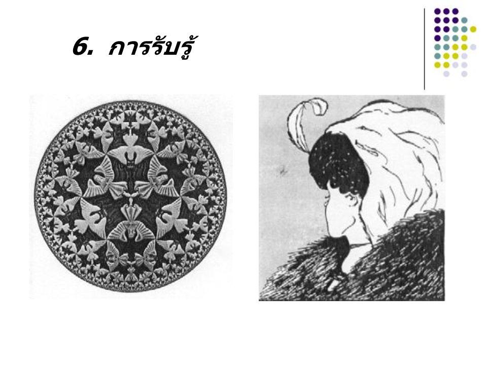 6. การรับรู้