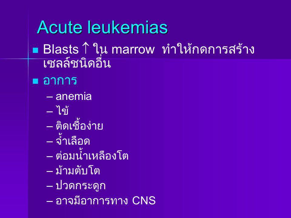 Acute leukemias Blasts  ใน marrow ทำให้กดการสร้าง เซลล์ชนิดอื่น อาการ – –anemia – – ไข้ – – ติดเชื้อง่าย – – จ้ำเลือด – – ต่อมน้ำเหลืองโต – – ม้ามตับ