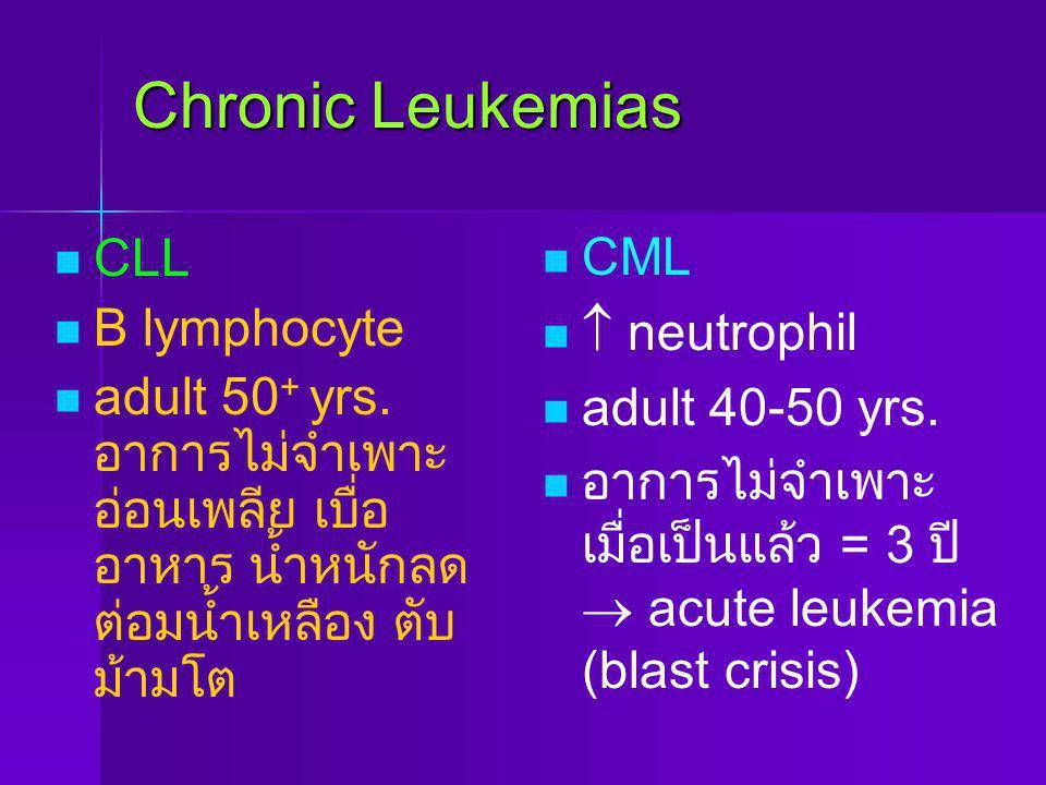 Chronic Leukemias CLL B lymphocyte adult 50 + yrs. อาการไม่จำเพาะ อ่อนเพลีย เบื่อ อาหาร น้ำหนักลด ต่อมน้ำเหลือง ตับ ม้ามโต CML  neutrophil adult 40-5