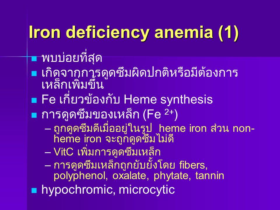 Iron deficiency anemia (1) พบบ่อยที่สุด เกิดจากการดูดซึมผิดปกติหรือมีต้องการ เหล็กเพิ่มขึ้น Fe เกี่ยวข้องกับ Heme synthesis การดูดซึมของเหล็ก (Fe 2+ )