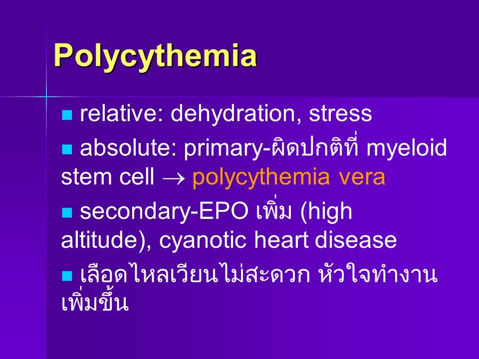 Polycythemia relative: dehydration, stress absolute: primary- ผิดปกติที่ myeloid stem cell  polycythemia vera secondary-EPO เพิ่ม (high altitude), cy