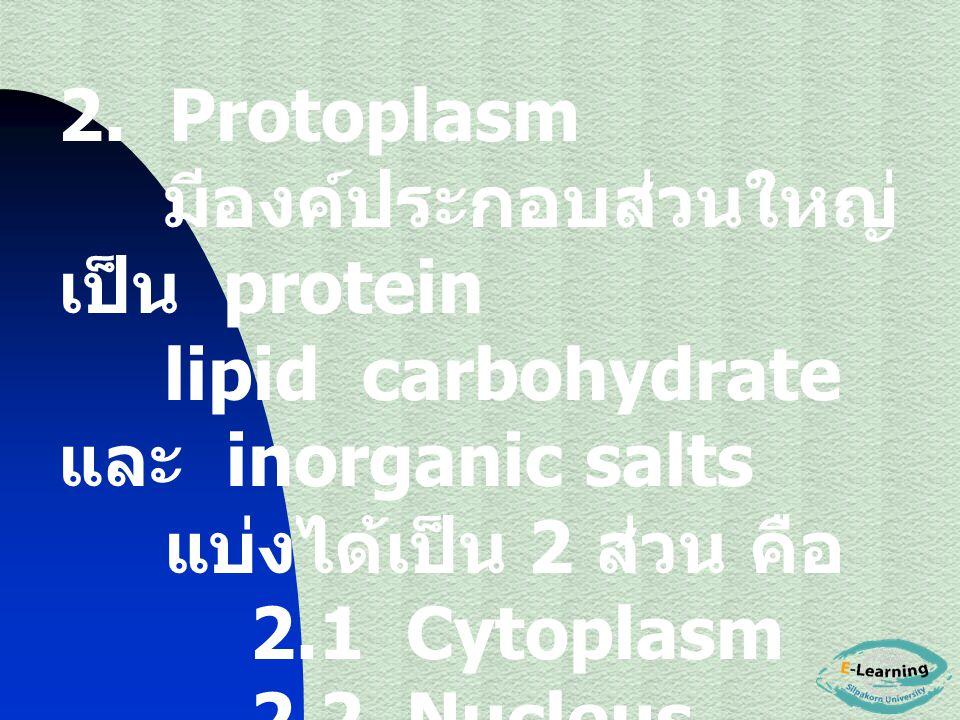 2. Protoplasm มีองค์ประกอบส่วนใหญ่ เป็น protein lipid carbohydrate และ inorganic salts แบ่งได้เป็น 2 ส่วน คือ 2.1 Cytoplasm 2.2 Nucleus