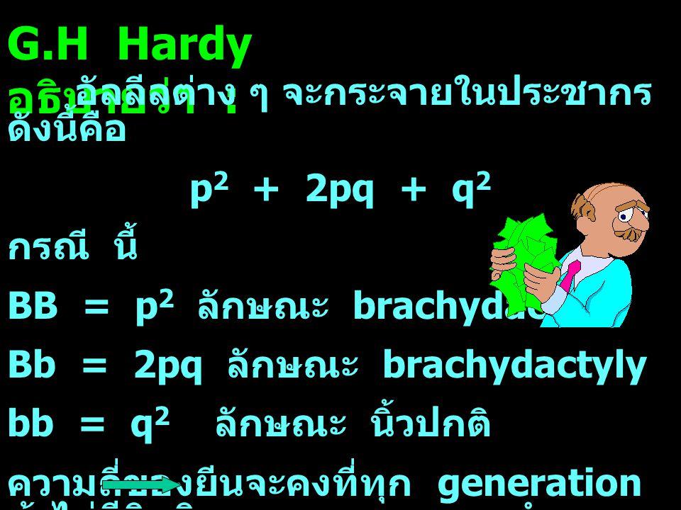 G.H Hardy อธิบายว่า : อัลลีลต่าง ๆ จะกระจายในประชากร ดังนี้คือ p 2 + 2pq + q 2 กรณี นี้ BB = p 2 ลักษณะ brachydactyly Bb = 2pq ลักษณะ brachydactyly bb