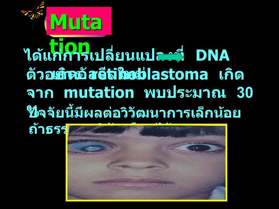 Muta tion ได้แก่การเปลี่ยนแปลงที่ DNA เกิดอัลลีลใหม่ ตัวอย่าง retinoblastoma เกิด จาก mutation พบประมาณ 30 % ปัจจัยนี้มีผลต่อวิวัฒนาการเล็กน้อย ถ้าธรร