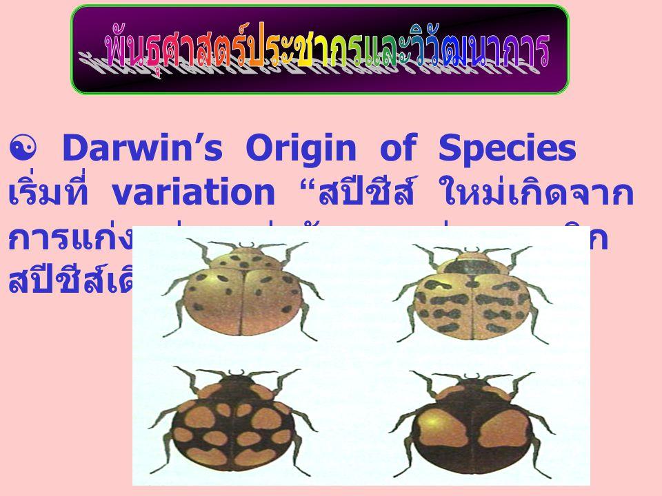 " Darwin's Origin of Species เริ่มที่ variation "" สปีชีส์ ใหม่เกิดจาก การแก่งแย่ง แข่งขัน ระหว่างสมาชิก สปีชีส์เดิมที่มี variation"""