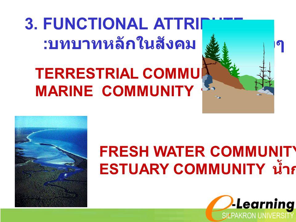 3. FUNCTIONAL ATTRIBUTE : บทบาทหลักในสังคม เรียกกว้างๆ TERRESTRIAL COMMUNITY บก MARINE COMMUNITY น้ำเค็ม FRESH WATER COMMUNITY น้ำจืด ESTUARY COMMUNIT