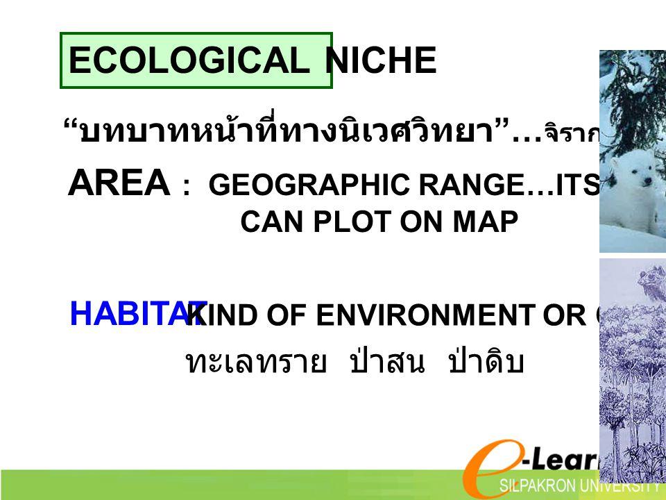 "ECOLOGICAL NICHE "" บทบาทหน้าที่ทางนิเวศวิทยา ""… จิรากรณ์ 2540 AREA : GEOGRAPHIC RANGE…ITS DISTRIBUTION CAN PLOT ON MAP HABITAT KIND OF ENVIRONMENT OR"