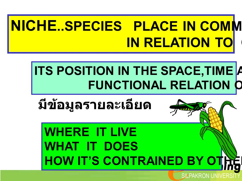 NICHE..SPECIES PLACE IN COMMUNITY IN RELATION TO OTHER SPECIES ITS POSITION IN THE SPACE,TIME AND FUNCTIONAL RELATION OF COMMUNITY WHERE IT LIVE WHAT IT DOES HOW IT'S CONTRAINED BY OTHER SPECIES มีข้อมูลรายละเอียด