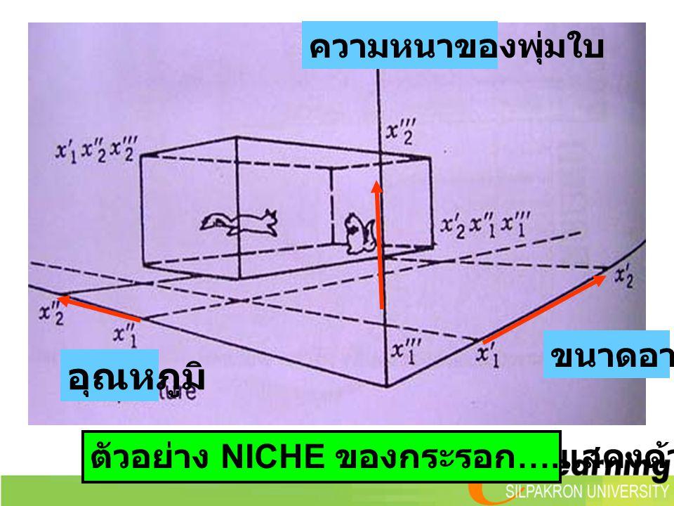 ตัวอย่าง NICHE ของกระรอก …. แสดงด้วย 3 ปัจจัย ขนาดอาหาร ความหนาของพุ่มใบ อุณหภูมิ