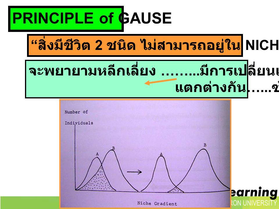 """PRINCIPLE of GAUSE """" สิ่งมีชีวิต 2 ชนิด ไม่สามารถอยู่ใน NICHE เดียวกันได้ """" จะพยายามหลีกเลี่ยง ……... มีการเปลี่ยนแปลงในด้านต่างๆ แตกต่างกัน …... ซ้อนท"""