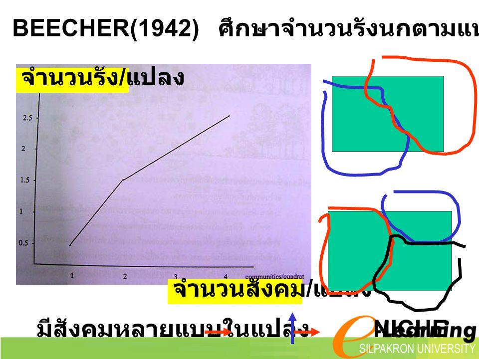 จำนวนสังคม / แปลง จำนวนรัง / แปลง มีสังคมหลายแบบในแปลง NICHE มีนกหลายชนิดด้วย BEECHER(1942) ศึกษาจำนวนรังนกตามแนวเชื่อมต่อ