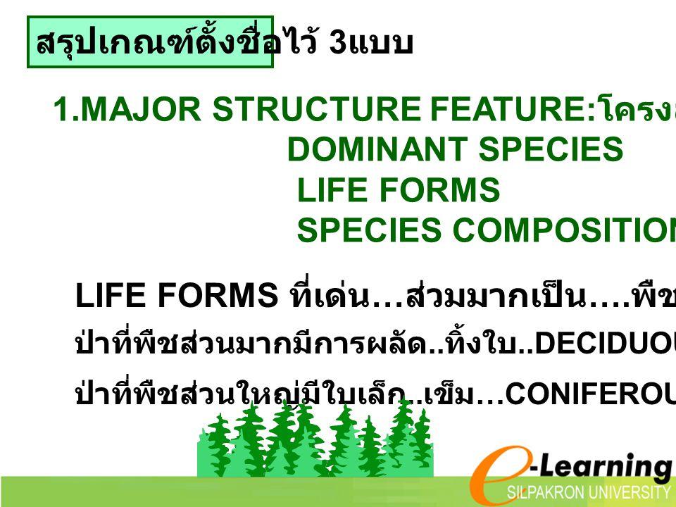 สรุปเกณฑ์ตั้งชื่อไว้ 3 แบบ 1.MAJOR STRUCTURE FEATURE: โครงสร้างหลักของสังคม DOMINANT SPECIES LIFE FORMS SPECIES COMPOSITION LIFE FORMS ที่เด่น … ส่วมม
