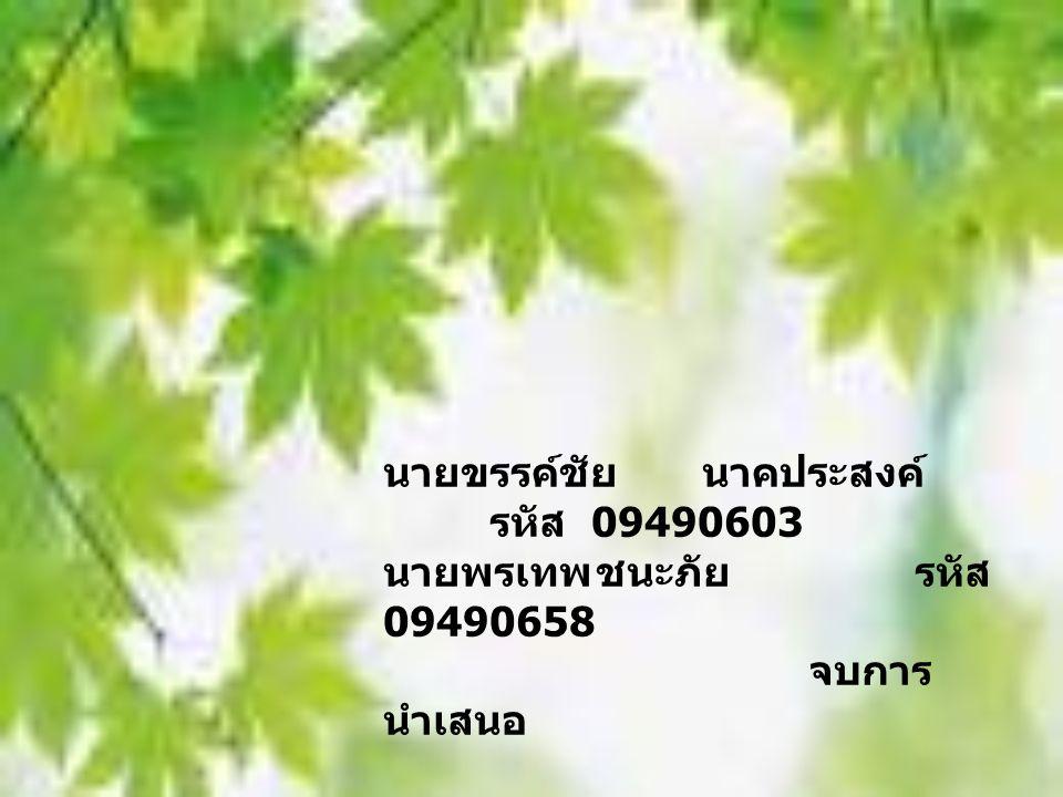 นายขรรค์ชัย นาคประสงค์ รหัส 09490603 นายพรเทพชนะภัยรหัส 09490658 จบการ นำเสนอ