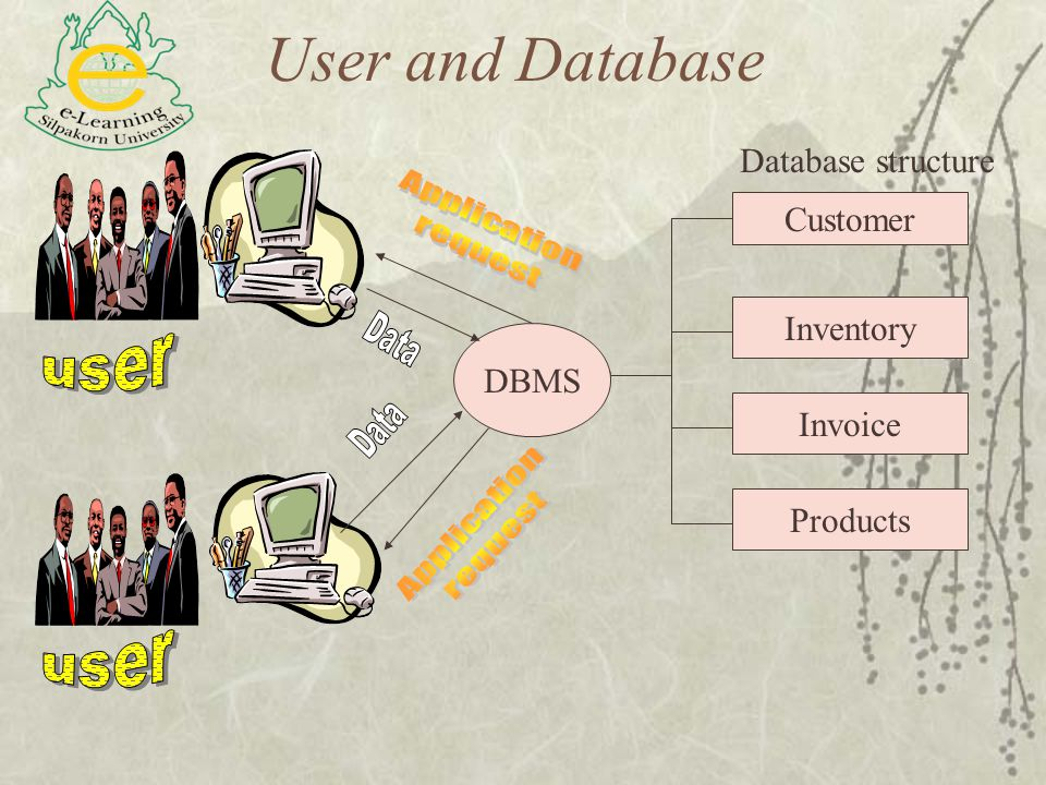 User and Database Database structure Customer Inventory Invoice Products DBMS