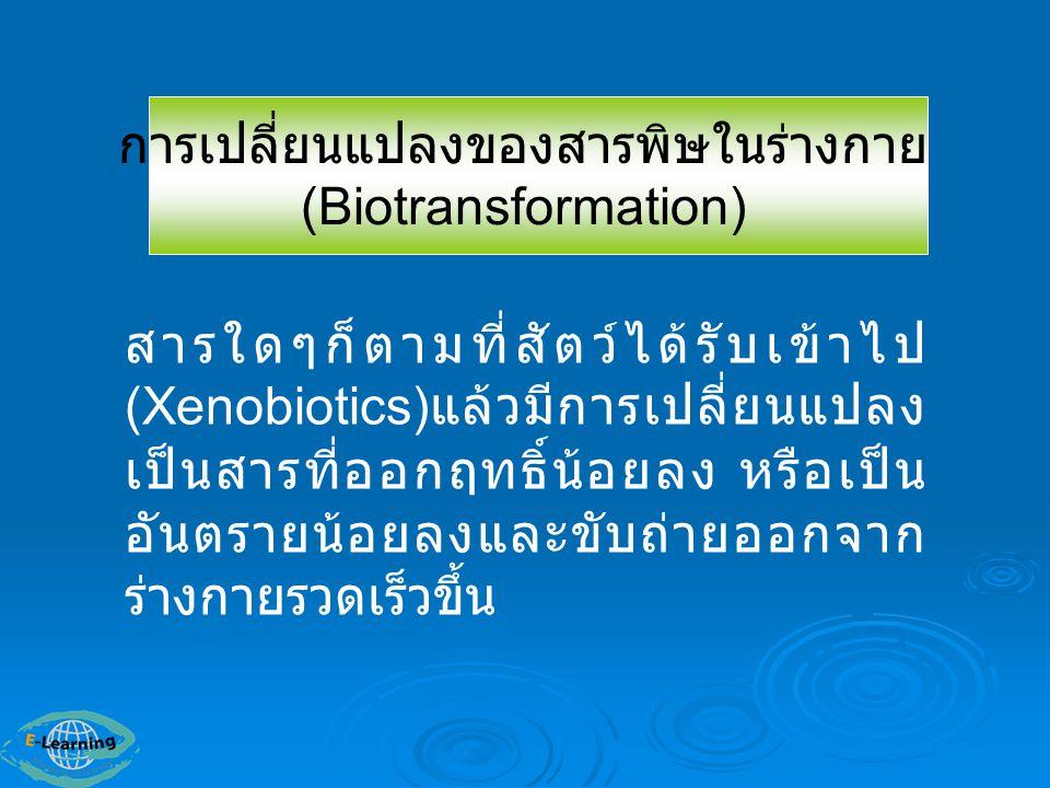 1.เปลี่ยน Metabolite ให้มีคุณสมบัติ ละลายน้ำได้ดีขึ้นและ ละลายในไขมัน ได้น้อยลง 3.