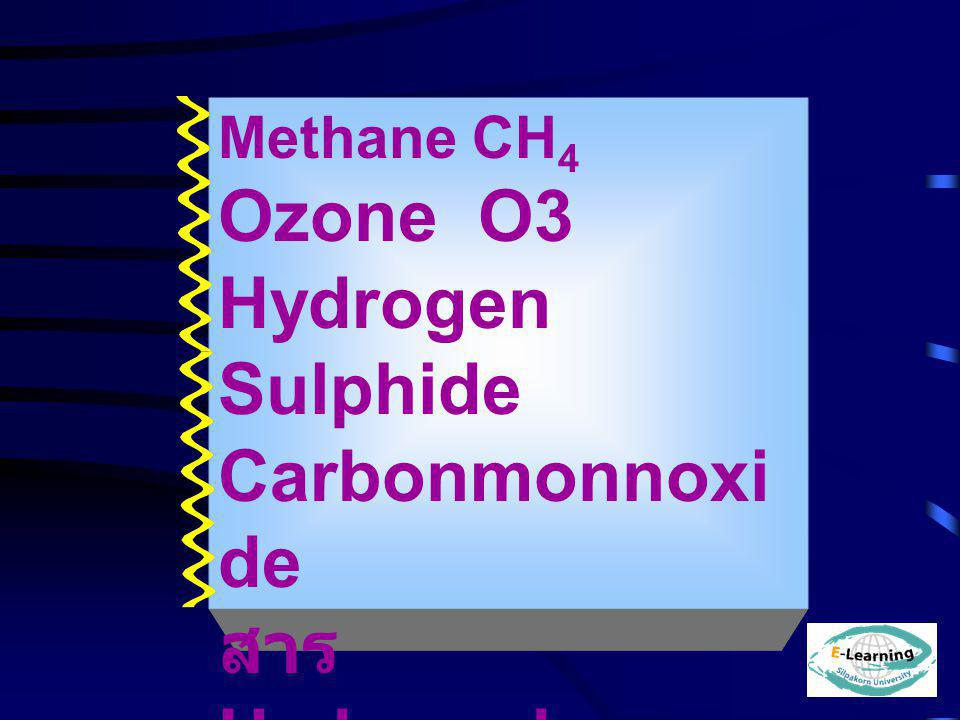 Methane CH 4 Ozone O3 Hydrogen Sulphide Carbonmonnoxi de สาร Hydrocarbon HC ฝุ่นผง 4 %m