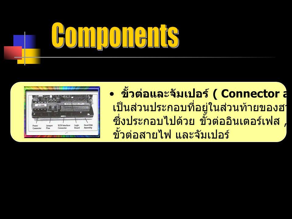 ขั้วต่อและจัมเปอร์ ( Connector and Jumper ) เป็นส่วนประกอบที่อยู่ในส่วนท้ายของฮาร์ดดิสก์ทุกๆตัว ซึ่งประกอบไปด้วย ขั้วต่ออินเตอร์เฟส, ขั้วต่อสายไฟ และจัมเปอร์