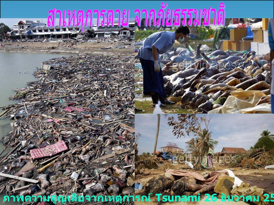 ภาพความสูญเสียจากเหตุการณ์ Tsunami 26 ธันวาคม 2547