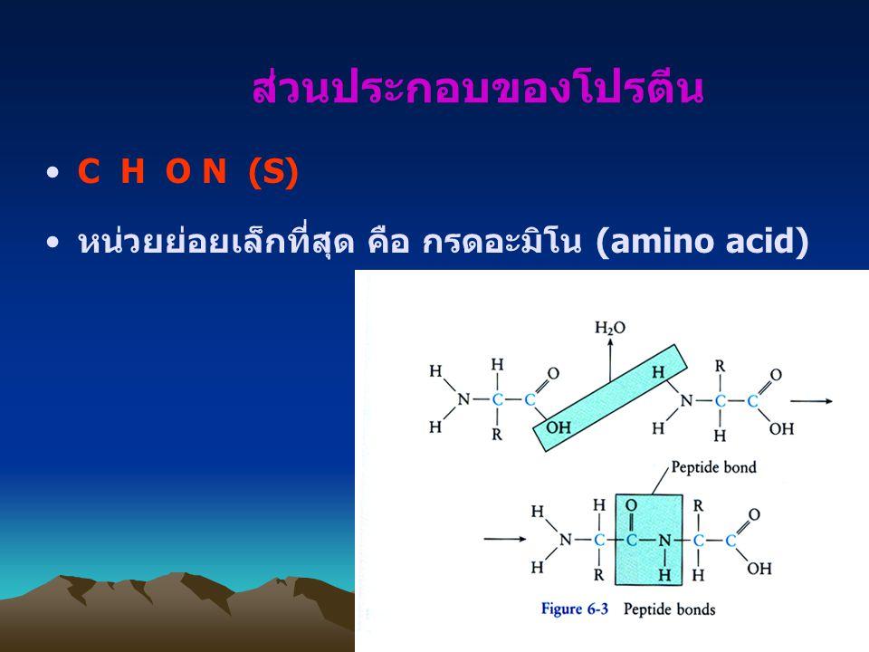 ส่วนประกอบของโปรตีน C H O N (S) หน่วยย่อยเล็กที่สุด คือ กรดอะมิโน (amino acid)