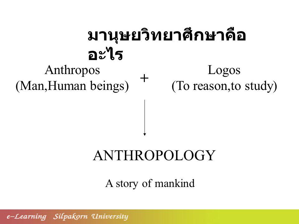 มานุษยวิทยาศึกษาคือ อะไร Anthropos (Man,Human beings) ANTHROPOLOGY Logos (To reason,to study) + A story of mankind