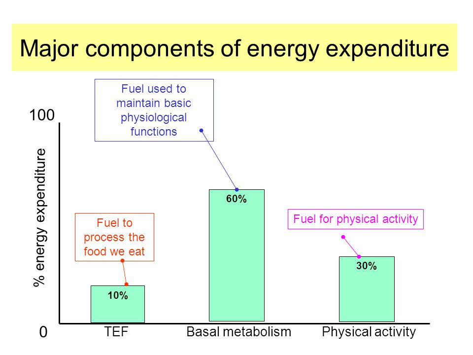 Major components of energy expenditure 10% 60% 30% TEFBasal metabolismPhysical activity % energy expenditure Fuel for physical activity Fuel used to maintain basic physiological functions Fuel to process the food we eat 100 0