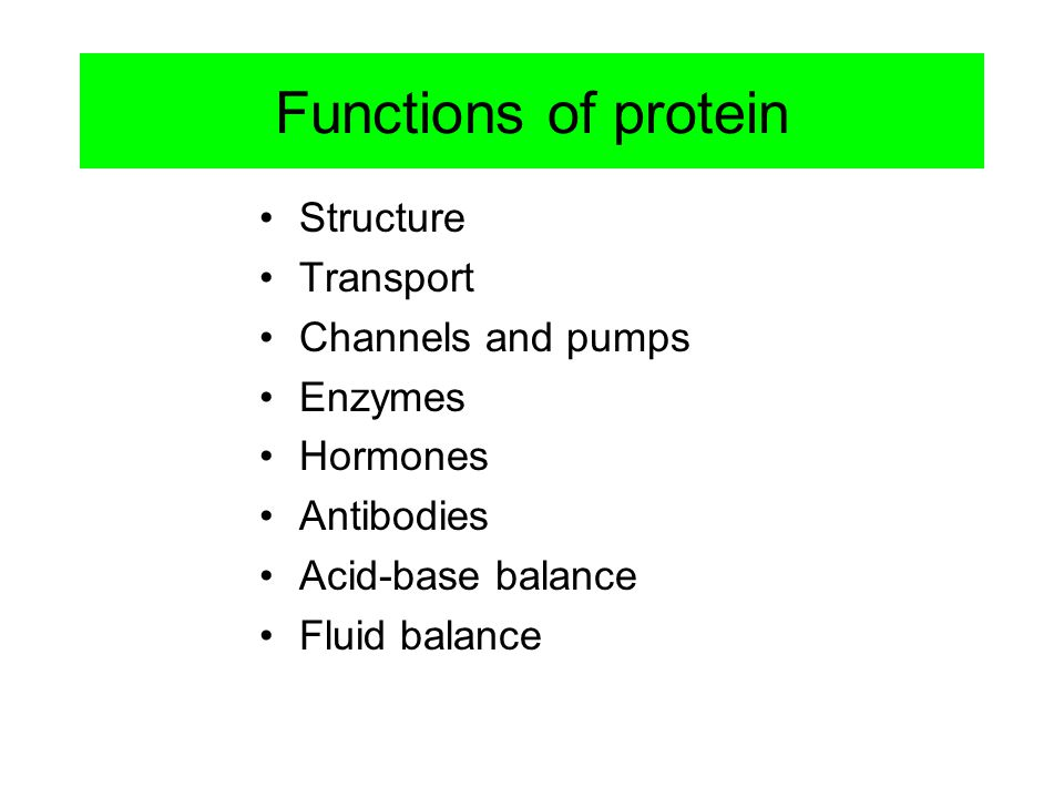 Functions of protein Structure Transport Channels and pumps Enzymes Hormones Antibodies Acid-base balance Fluid balance