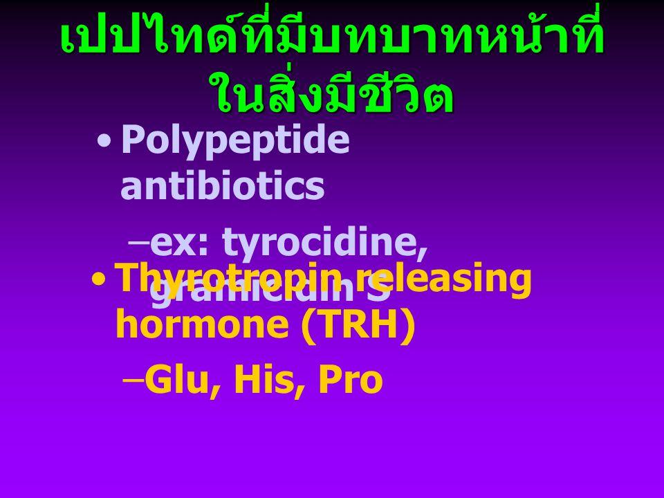 เปปไทด์ที่มีบทบาทหน้าที่ ในสิ่งมีชีวิต Glutathione (GSH; Glu-Cys-Gly) –amino group ของ Cys จับกับ  - carboxyl ของ Glu –GSH + GSH ---> GSSG – พบมากใน hepatocyte –antioxidant