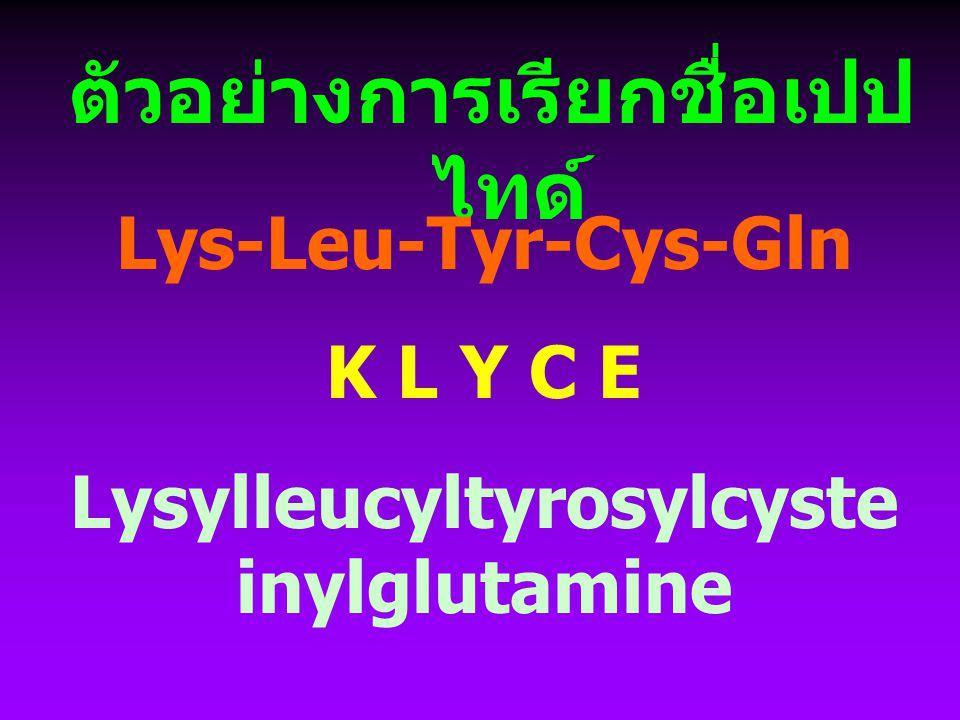 การเรียกชื่อเปปไทด์ ชื่อกรดอะมิโนที่ลงท้ายด้วย - ate, -ine เปลี่ยนเป็นลงท้าย ด้วย -yl เรียกชื่อตามลำดับจาก ซ้าย (amino terminal residue) ไปขวา (carboxyl terminal residue) ตัวสุดท้ายเรียกเป็นชื่อกรดอะมิ โนตัวนั้น ๆ