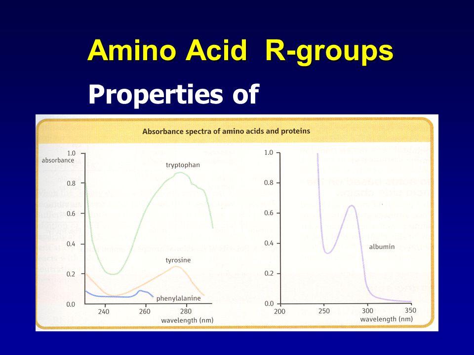 Amino Acid R-groups Properties of individual amino acids