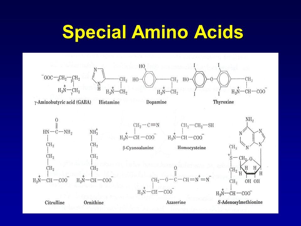 Special Amino Acids