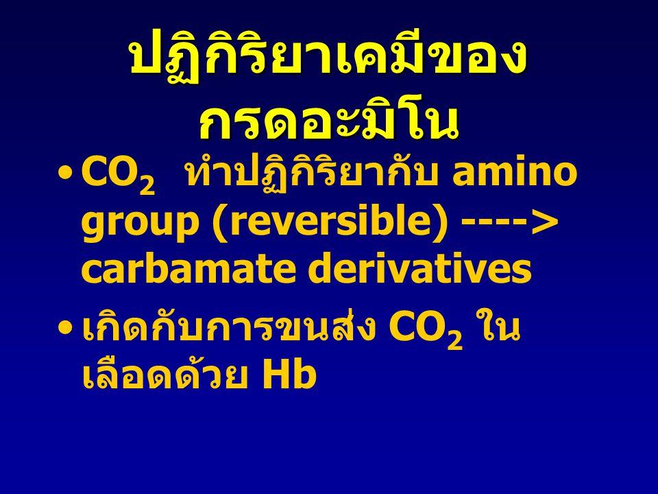 ปฏิกิริยาเคมีของ กรดอะมิโน CO 2 ทำปฏิกิริยากับ amino group (reversible) ----> carbamate derivatives เกิดกับการขนส่ง CO 2 ใน เลือดด้วย Hb
