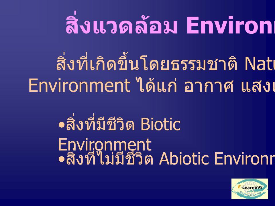สิ่งแวดล้อม Environment สิ่งที่เกิดขึ้นโดยธรรมชาติ Natural Environment ได้แก่ อากาศ แสงแดด แยกเป็น สิ่งที่มีชีวิต Biotic Environment สิ่งที่ไม่มีชีวิต Abiotic Environment
