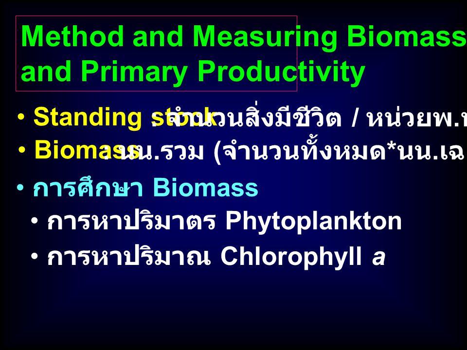 การศึกษา Biomass Standing stock Method and Measuring Biomass and Primary Productivity : จำนวนสิ่งมีชีวิต / หน่วยพ. ท. หรือปริมาตร การหาปริมาตร Phytopl
