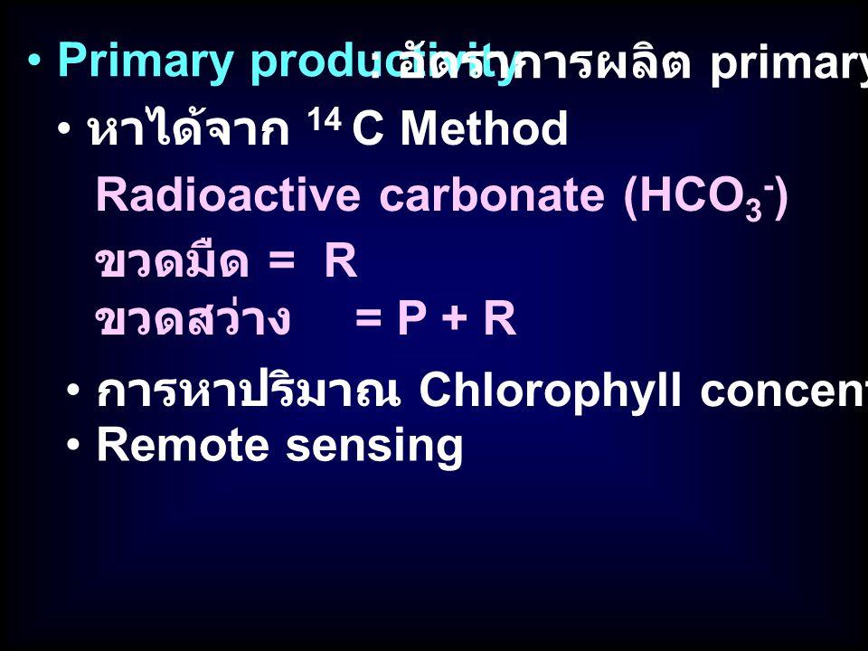 Primary productivity : อัตราการผลิต primary production หาได้จาก 14 C Method Radioactive carbonate (HCO 3 - ) Remote sensing การหาปริมาณ Chlorophyll co