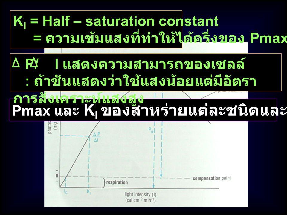 Pmax และ K I ของสาหร่ายแต่ละชนิดและแต่ละที่จะแตกต่างกัน K I = Half – saturation constant = ความเข้มแสงที่ทำให้ได้ครึ่งของ Pmax P/ I แสดงความสามารถของเ