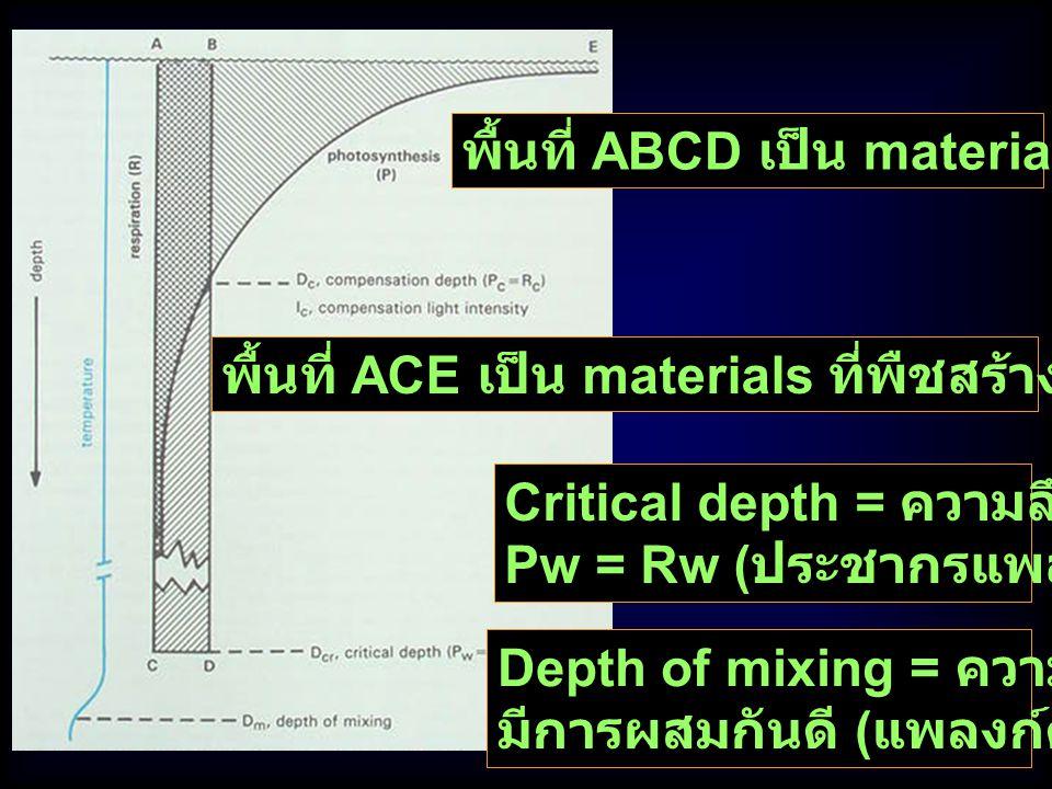 พื้นที่ ABCD เป็น materials ที่พืชใช้ Res Critical depth = ความลึกที่ Pw = Rw ( ประชากรแพลงก์ตอนพืช ) พื้นที่ ACE เป็น materials ที่พืชสร้างจาก Photos