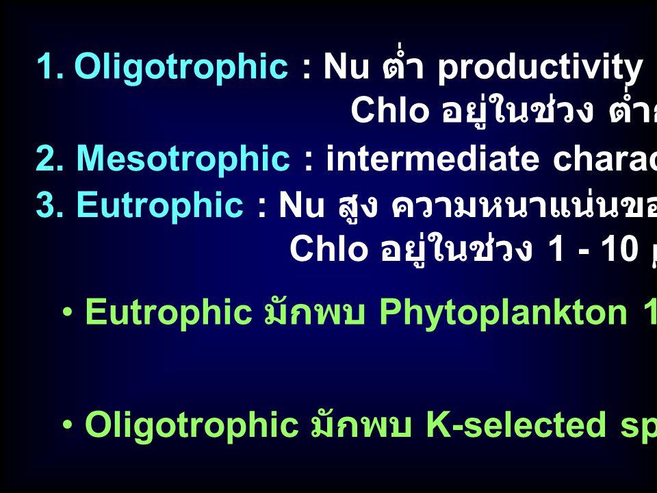 Eutrophic มักพบ Phytoplankton 1 – 2 ชนิดที่โตเร็ว (r-selected sp.) Oligotrophic มักพบ K-selected sp. แข่งกันมาก 1.Oligotrophic : Nu ต่ำ productivity ต