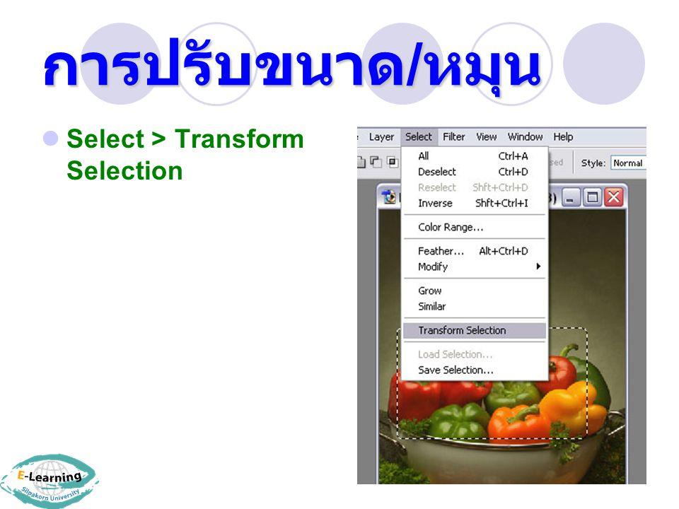 การปรับขนาด / หมุน Select > Transform Selection