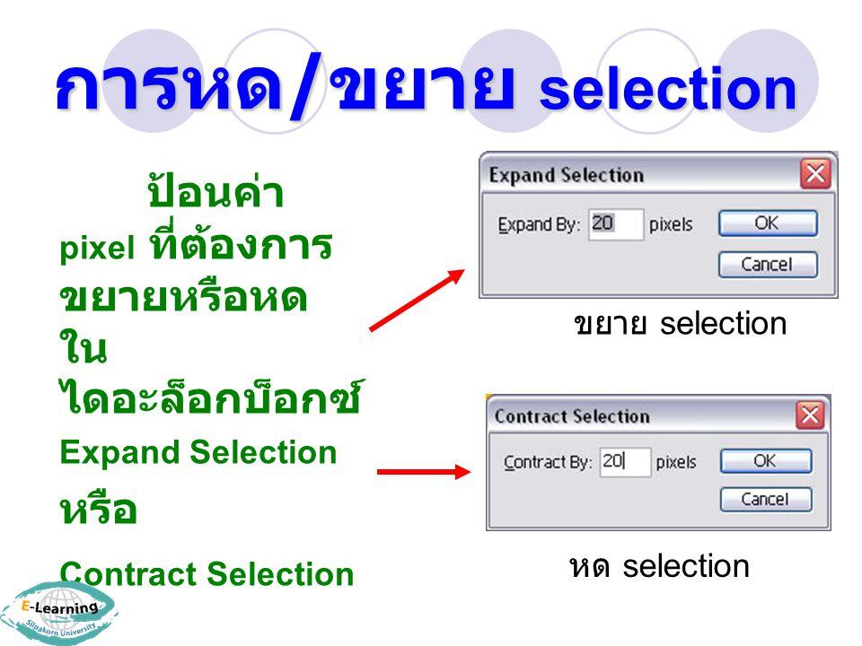 การหด / ขยาย selection ป้อนค่า pixel ที่ต้องการ ขยายหรือหด ใน ไดอะล็อกบ็อกซ์ Expand Selection หรือ Contract Selection ขยาย selection หด selection