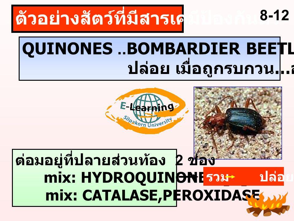 สัตว์ สร้างขึ้นเอง รับจากที่อื่น..SECONDHAND กลุ่มสัตว์ที่มีการสร้างสารไว้ป้องกันตัวมากที่สุด ARTHROPODS ผึ้ง ต่อ แตน แมลงปีกแข็ง