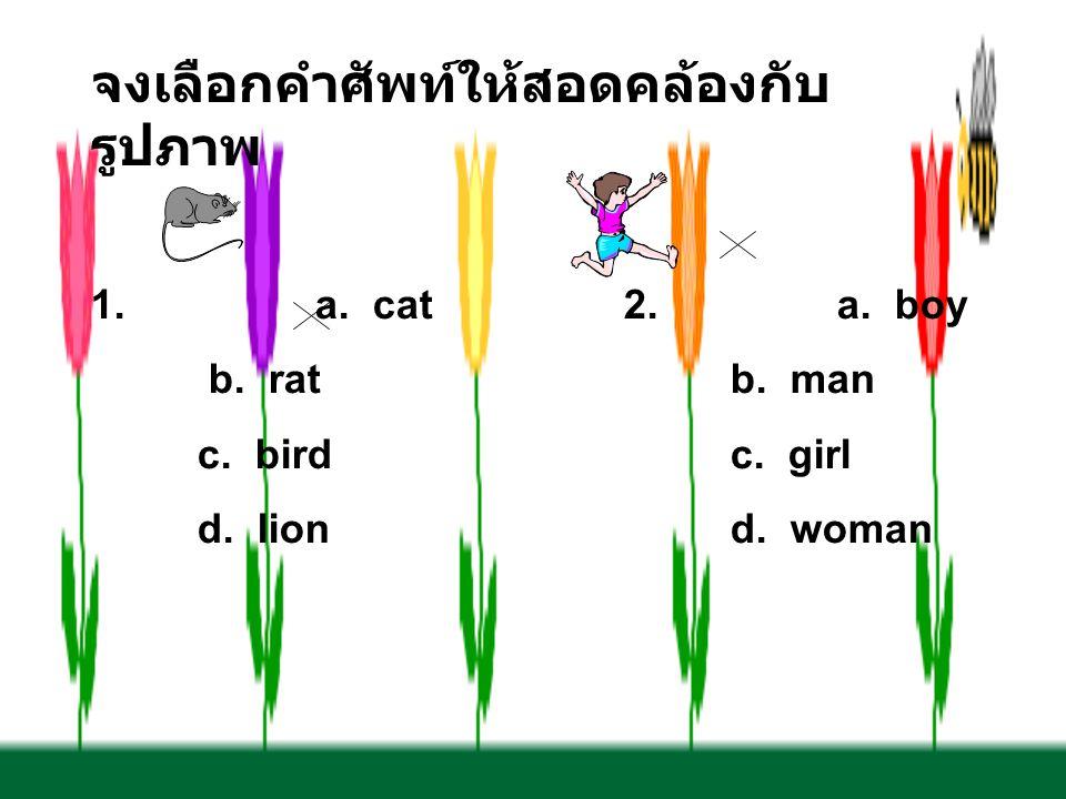 จงเลือกคำศัพท์ให้สอดคล้องกับ รูปภาพ 1. a. cat2.a. boy b. ratb. man c. birdc. girl d. liond. woman