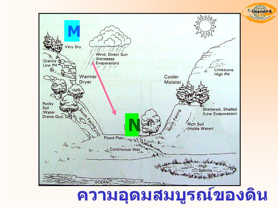 M N ความอุดมสมบูรณ์ของดิน