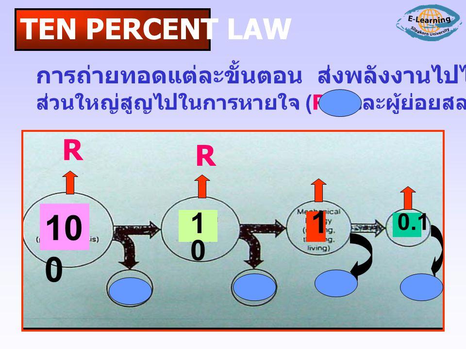 TEN PERCENT LAW การถ่ายทอดแต่ละขั้นตอน ส่งพลังงานไปได้เพียง 10-20 % ส่วนใหญ่สูญไปในการหายใจ (R) และผู้ย่อยสลาย ( ) 10 0 1010 1 0.1 R R