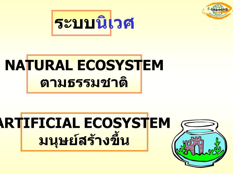 ARTIFICIAL ECOSYSTEM มนุษย์สร้างขึ้น
