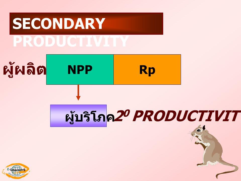 NPPRp ผู้บริโภค 2 0 PRODUCTIVITY ผู้ผลิต SECONDARY PRODUCTIVITY