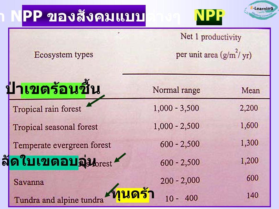 ค่า NPP ของสังคมแบบต่างๆ ป่าเขตร้อนชื้น ผลัดใบเขตอบอุ่น ทุนดร้า NPP