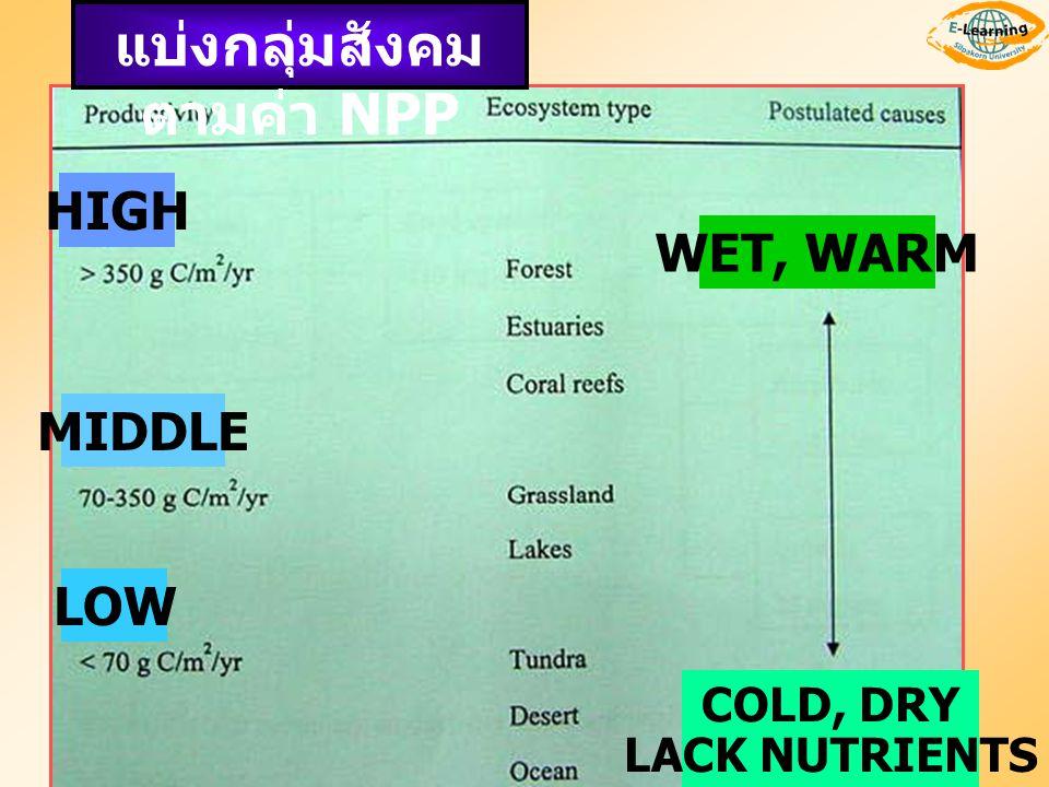 แบ่งกลุ่มสังคม ตามค่า NPP HIGH MIDDLE LOW WET, WARM COLD, DRY LACK NUTRIENTS